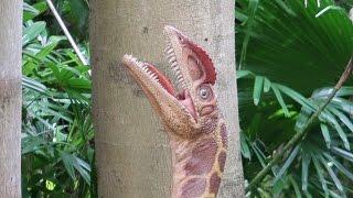 A Dinosaur Filled Prehistoric Scavenger Hunt At Leu Gardens Orlando!