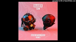 Baauer – Sow (Havok Roth & Pierce Remix)