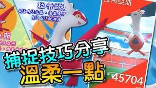 【精靈寶可夢GO】POKEMON GO|拉帝亞斯、拉帝歐斯登場!!捕捉技巧分享!溫柔點~