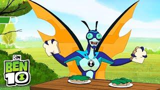 Ben 10 | Prank Time! | Cartoon Network
