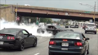 EPIC Burnout Shelby GT500 Super Snake // Diesel Truck Pulled Over // Sick Burnout Mustang Cobra !!!