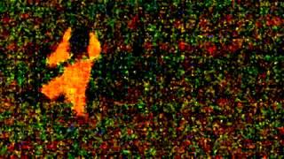 Copia de la llorona aparece en san clemente del tuyu,increible