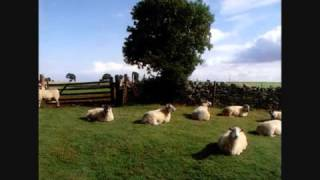 The KLF ~ Six Hours to Louisiana Black Coffee Going Cold (Chill Out)