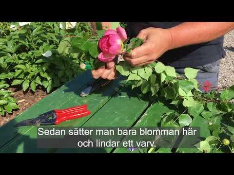 Så binder du en blomsterkrans