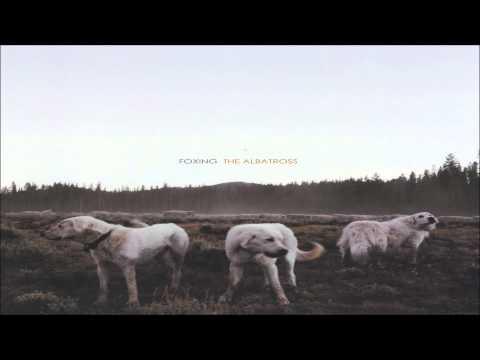 foxing-bit-by-a-dead-bee-pt-ii-2013-darren-paradissis