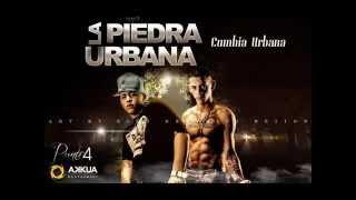 'La Piedra Urbana'   No Me Olvides    Enero 2O13