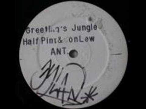 half-pint-greetings-jungle-jet-star-records-ant-1-herman
