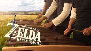 Zelda Breath of the Wild - Main Theme on Marimba