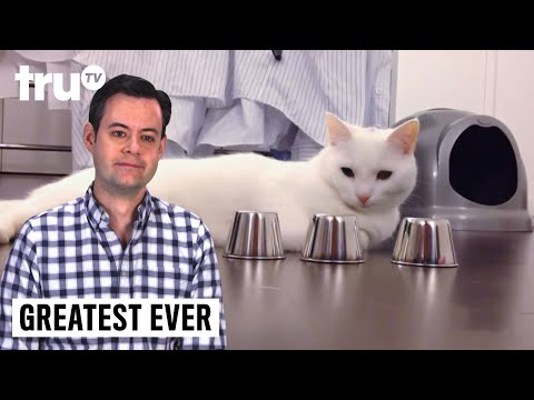 Greatest Ever – Amazing Pet Tricks