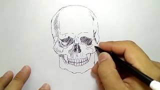 cara menggambar tengkorak dengan mudah / how to draw easy skull