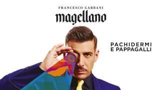 Francesco Gabbani - Pachidermi e pappagalli