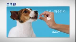 全能狗 ─ 對付跳蚤壁蝨的大突破