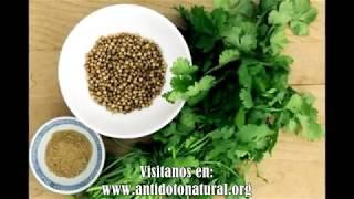 😮Esto cura de un solo golpe riñones, páncreas, hígado y además…