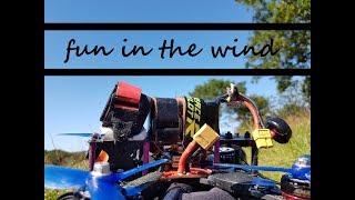 Fun In The Wind