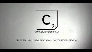 Spektrum - Kinda New (Paul Woolford Remix)