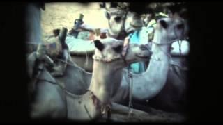 Surf Aid-Kit - Caïro (Official Video)