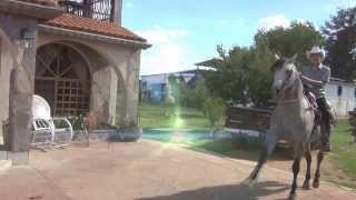 Tony Valenzuela - Ni Me Acorde De Ti (Video Oficial) 2013