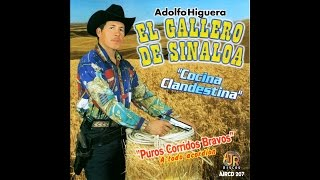 El Gallero de Sinaloa - Mi Chavelita Linda