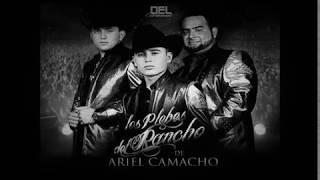 Los Plebes del Rancho - No Lo Hice Bien - (Letra) Cancion completa