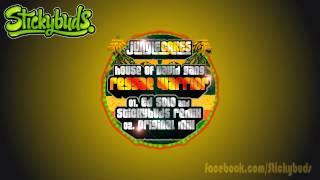 House of David Gang - Reggae Warrior (Ed Solo & Stickybuds Remix)