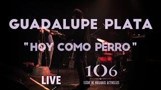 Guadalupe Plata - Hoy Como Perro - Live @Le106