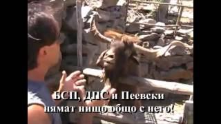 Доц. Христо Бозов за кмет на Варна