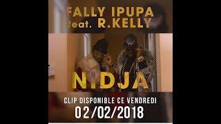 FALLY IPUPA FEAT R.KELLY - NIDJA