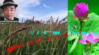 Khmer Cambodia Song Music Cambodian Farm Green Plant News New