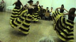 Venezia Dance Team