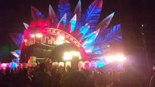Sonic Species na Tribe Rio 2016