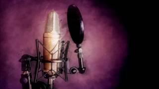 Run The Jewels - Love Again (BRTWLF REMIX) (Akinyele Back) feat. Gangsta Boo