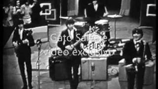 The American Beetles - Live 1964 - Mean woman blues - Clip TV Canal 9 - Buenos Aires - Argentina