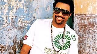 SHAGGY  - REPENT