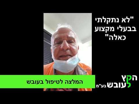 סרטון: המלצה חמה על טיפול בעובש של צוות הקץ לעובש