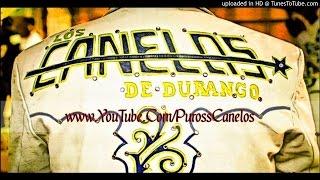 Los Canelos De Durango - Mario Aguirre (Fiesta De Los Olivas Con Tuba)