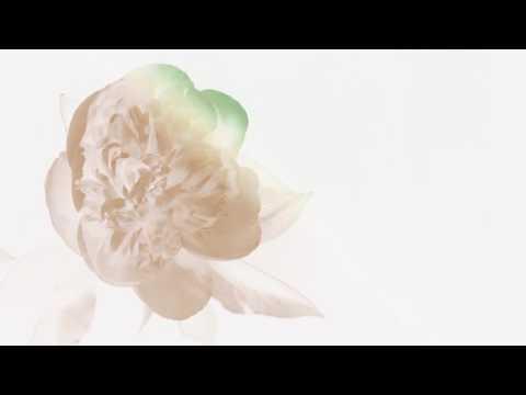 Alina Baraz & Galimatias - Unfold (Animated Video)