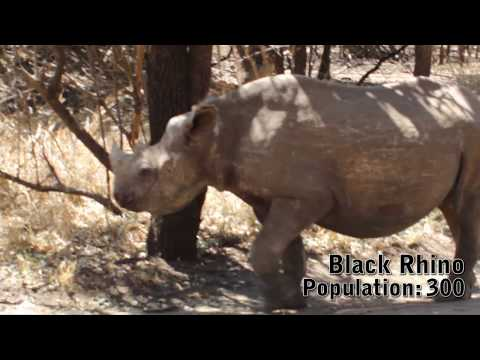 South Africa 2011 – Part 3 / 3