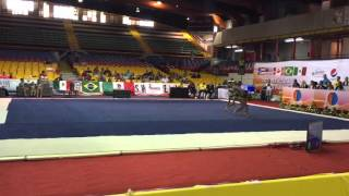 Rutina Final 1st Acrobatic Gymnastics Panamericans Championship and Puerto Rico Acro Cup
