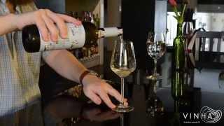 Prova de vinhos - Diálogo - Branco