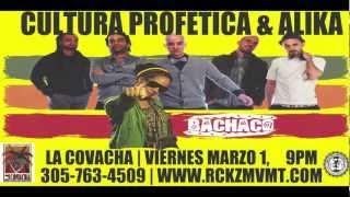 Cultura Profética | Alika & Nueva Alianza + Bachaco Live