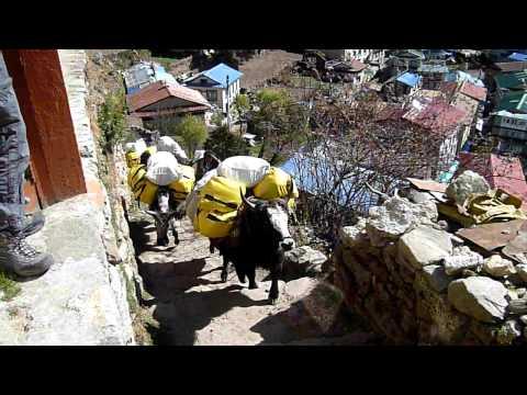 2010_11_06_Nepal_video_part1.mp4