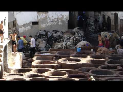 Maroc Fes Fez  cuir les tanneurs Morocco
