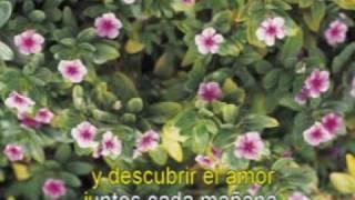 MUSICA ROMANTICA  - Miguel Gallardo - Hoy tengo ganas de ti