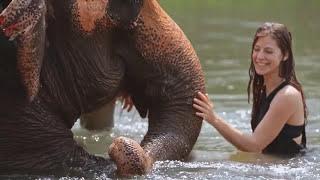 Lost Frequencies ft. Sandro Cavazza - Beautiful Life (Antoine Chambe & Raspo Remix) [Nepal]