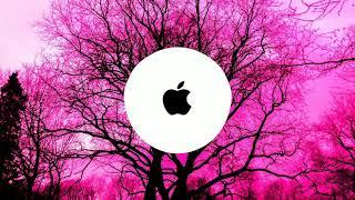 IPhone ringtone let me love you remix