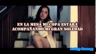 Sia Chandelier En Español Laura M Buitrago (LETRA)