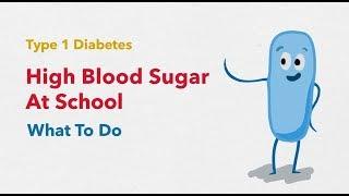 Type 1 Diabetes: High Blood Sugar At School width=