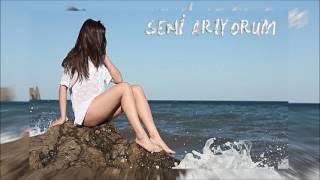 Pınar Sezer-Seni Arıyorum
