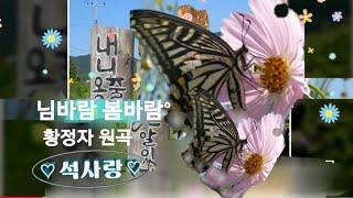 봄바람 님바람1958년[원곡.황정자]- 석사랑