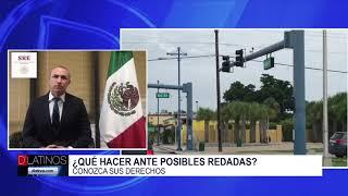 El cónsul de México en Miami nos habla sobre las redadas en Immokalee y que hacer ante una detencion